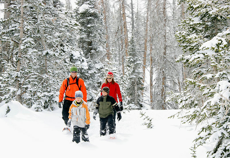 Best Places To Snow Shoe In Utah County