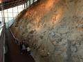 2-Dinosaur-National-Monument-800x600.jpg