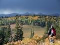 OldSite-Sept-Oct-2008-CD-Wolf-IMG-9301-800x600.jpg