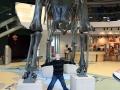 Dino-Natl-Mon-6368-800x600.jpg