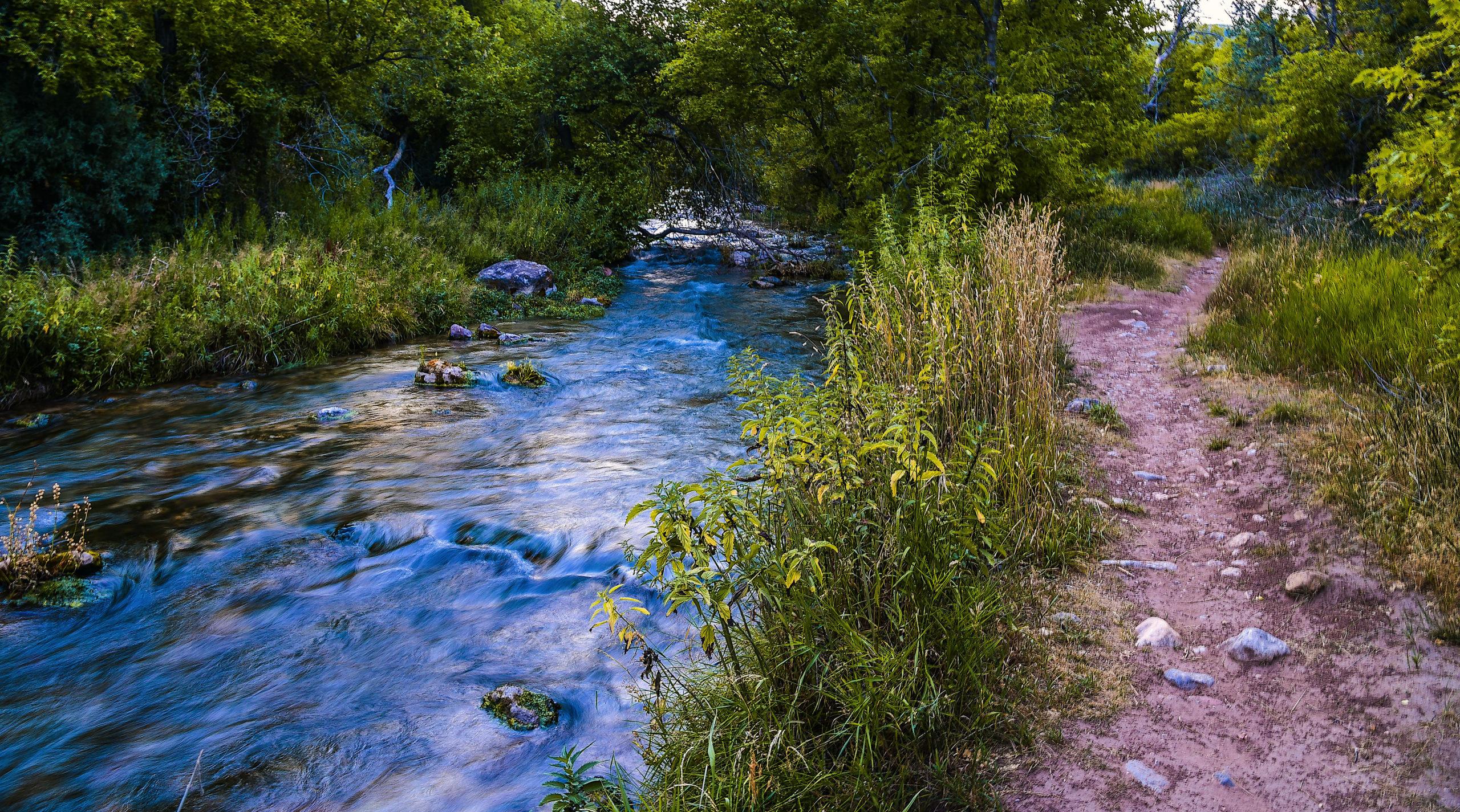 a trail next to Jones Creek in Utah
