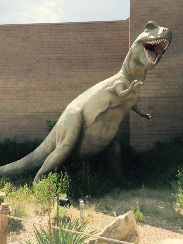 tyrannosaurus model on display